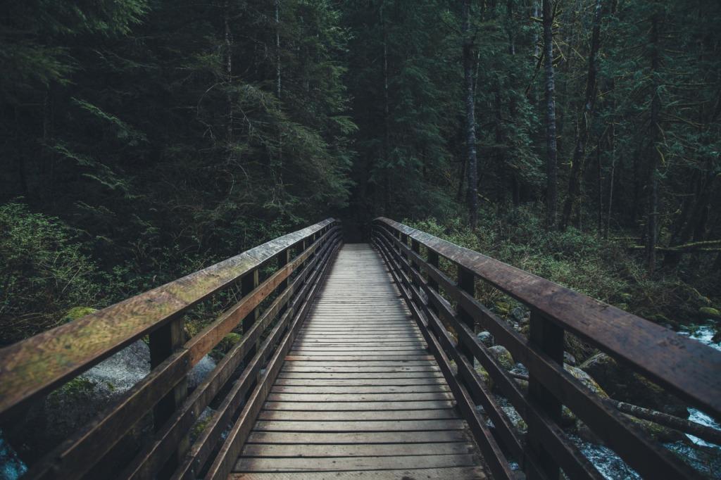 dylan_furst_bridge